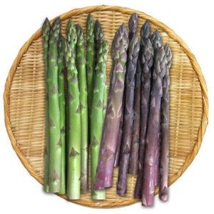 北海道のアスパラガスは2Lサイズの大きな野菜