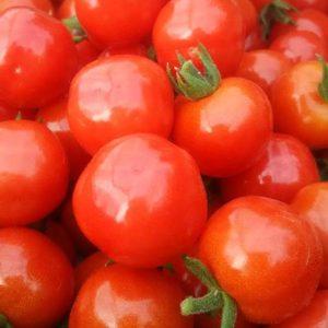 長沼町ファーム弦のプチぷよトマト