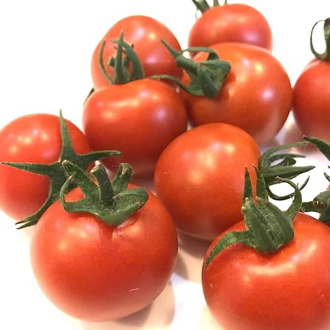 北海道の真っ赤なトマトほれまる