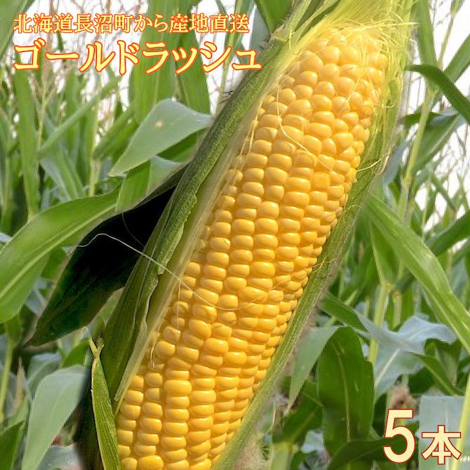 mae301
