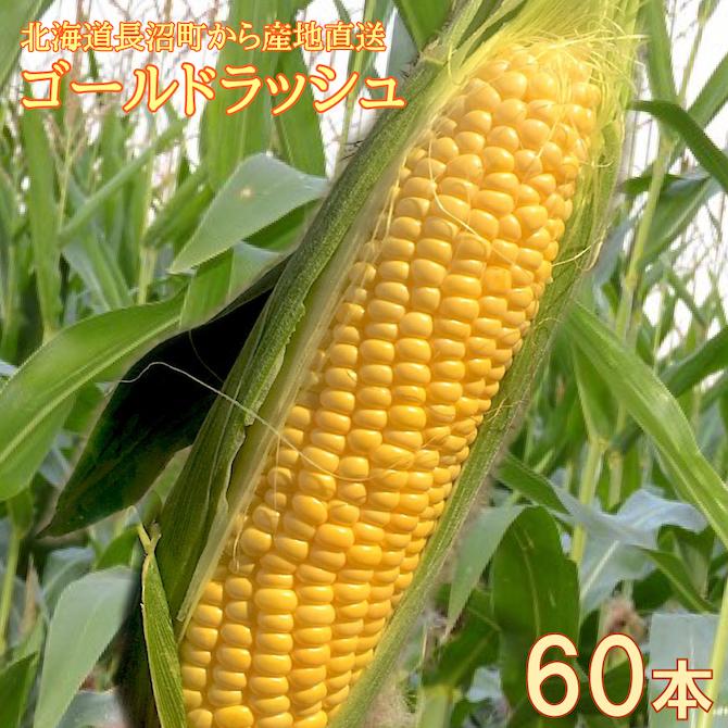 mae305